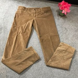 ABERCROMBIE & FITCH Sueded Cotton Pants